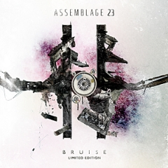 Assemblage 23: Bruise