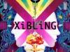 Xibling_GroundZero
