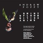 Andrew Poppy - Shiny Floor Shiny Ceiling