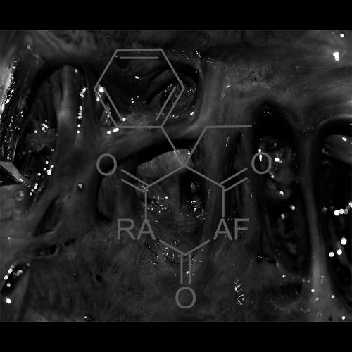 Ritual Aesthetic - The Analog Flesh