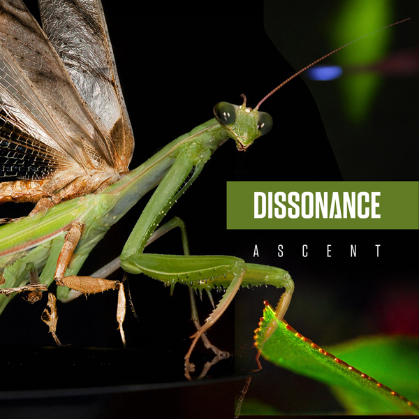 Dissonance - Ascent EP